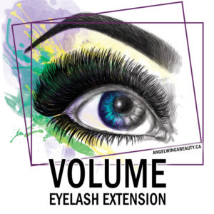 montreal-expert-volume-eyelash-extension-training