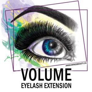 montreal-expert-volume-eyelash-extension-training